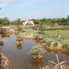 Quinta dos Poetas Nature Hotel & Apartments детские мероприятия
