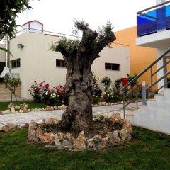 Отель All Senses Nautica Blue Exclusive Resort & Spa-All Inclusive фото 5