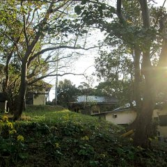 Отель Yakushima South Village Якусима фото 6