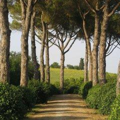 Отель Agriturismo Il Parco Di Kipo Монтефано приотельная территория фото 2