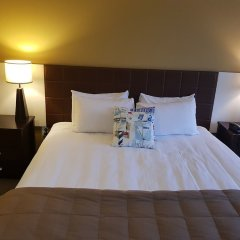 Quality Hotel Oceans Tutukaka комната для гостей