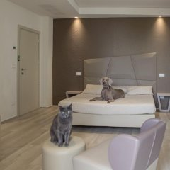 Hotel Principe комната для гостей фото 3