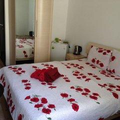 Мини-отель Папайя Парк Стандартный номер с различными типами кроватей фото 10