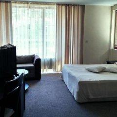 Отель Meteor Family Hotel Болгария, Чепеларе - отзывы, цены и фото номеров - забронировать отель Meteor Family Hotel онлайн удобства в номере