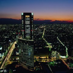Отель Park Hyatt Tokyo Токио балкон