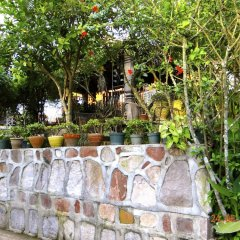 Отель Cabañas los Encinos Гондурас, Тегусигальпа - отзывы, цены и фото номеров - забронировать отель Cabañas los Encinos онлайн бассейн фото 2