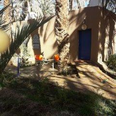 Отель Riad Tagmadart Ferme D'hôte Марокко, Загора - отзывы, цены и фото номеров - забронировать отель Riad Tagmadart Ferme D'hôte онлайн фото 16