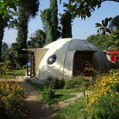 Отель at the End of the Universe Непал, Нагаркот - отзывы, цены и фото номеров - забронировать отель at the End of the Universe онлайн развлечения
