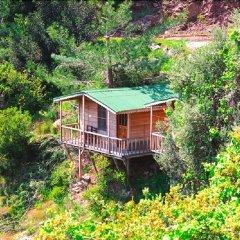 Full Moon Camp Турция, Кабак - отзывы, цены и фото номеров - забронировать отель Full Moon Camp онлайн фото 3