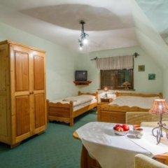 Отель Pensjonat Litworówka Поронин в номере