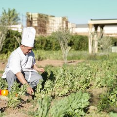 Отель Oscar Hotel by Atlas Studios Марокко, Уарзазат - отзывы, цены и фото номеров - забронировать отель Oscar Hotel by Atlas Studios онлайн фото 6