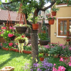 Отель Guest House Bashtina Striaha фото 7