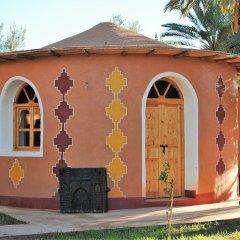 Отель Ecolodge - La Palmeraie Марокко, Уарзазат - отзывы, цены и фото номеров - забронировать отель Ecolodge - La Palmeraie онлайн фото 13