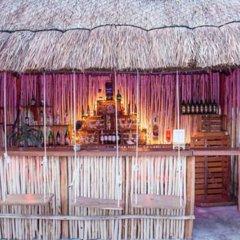 Отель Agavero Hostel Мексика, Канкун - отзывы, цены и фото номеров - забронировать отель Agavero Hostel онлайн гостиничный бар фото 3