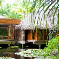 Отель Bora Bora Pearl Beach Resort and Spa Французская Полинезия, Бора-Бора - отзывы, цены и фото номеров - забронировать отель Bora Bora Pearl Beach Resort and Spa онлайн балкон