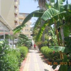 Sun Maritim Hotel Турция, Аланья - 1 отзыв об отеле, цены и фото номеров - забронировать отель Sun Maritim Hotel онлайн фото 5