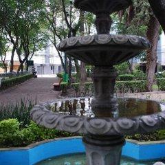 Отель HOMFOR Мехико фото 6