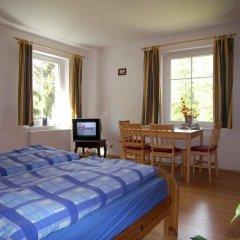 Отель Penzion Polarka Чехия, Лазне-Кинжварт - отзывы, цены и фото номеров - забронировать отель Penzion Polarka онлайн комната для гостей фото 3