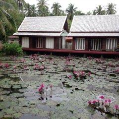 Отель Villa Oasis Luang Prabang фото 3