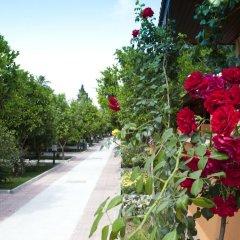 Hotel Ozlem Garden - All Inclusive фото 21