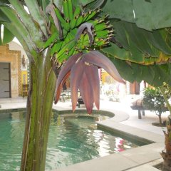 Dar Souad in Tunis, Tunisia from 122$, photos, reviews - zenhotels.com pool photo 3