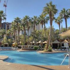 Отель Treasure Island Hotel & Casino США, Лас-Вегас - отзывы, цены и фото номеров - забронировать отель Treasure Island Hotel & Casino онлайн бассейн фото 2