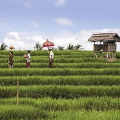 Отель Ibis Styles Bali Benoa фитнесс-зал фото 2