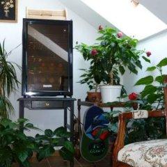 Отель Green Apartment Чехия, Франтишкови-Лазне - отзывы, цены и фото номеров - забронировать отель Green Apartment онлайн фото 4