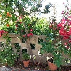 Отель Pizania Греция, Калимнос - отзывы, цены и фото номеров - забронировать отель Pizania онлайн фото 4