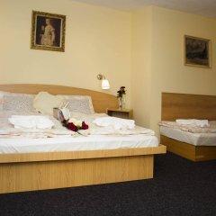 Отель Penzion Dolícek Хеб комната для гостей