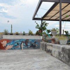 Отель Casa Guadalupe GDL Мексика, Гвадалахара - отзывы, цены и фото номеров - забронировать отель Casa Guadalupe GDL онлайн бассейн фото 2