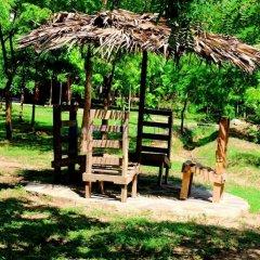 Отель Lavish Eco Jungle детские мероприятия