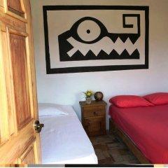 Отель Hostel Cancun Natura Мексика, Канкун - отзывы, цены и фото номеров - забронировать отель Hostel Cancun Natura онлайн комната для гостей