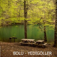 Evren Konukevi Турция, Болу - отзывы, цены и фото номеров - забронировать отель Evren Konukevi онлайн приотельная территория