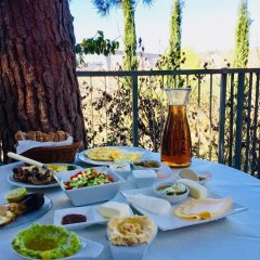 Отель Tur Sinai Organic Farm Resort Иерусалим питание