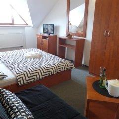 Отель Pension Paldus Чехия, Прага - отзывы, цены и фото номеров - забронировать отель Pension Paldus онлайн комната для гостей