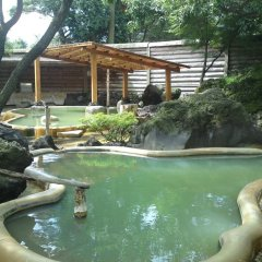 Arden Hotel Aso Минамиогуни бассейн