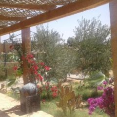 Отель Les Portes Du Desert Марокко, Мерзуга - отзывы, цены и фото номеров - забронировать отель Les Portes Du Desert онлайн фото 6