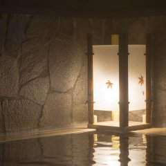 Отель Dormy Inn Toyama Япония, Тояма - отзывы, цены и фото номеров - забронировать отель Dormy Inn Toyama онлайн бассейн фото 3