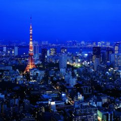 Отель The Ritz Carlton Tokyo Токио фото 6