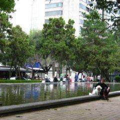 Отель First Class Apartmet by Mr.W Мехико приотельная территория