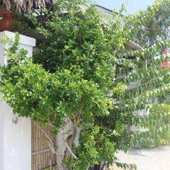 Отель An Bang Vera Homestay Вьетнам, Хойан - отзывы, цены и фото номеров - забронировать отель An Bang Vera Homestay онлайн фото 7