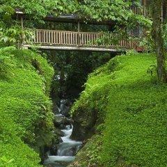Отель Rios Tropicales фото 13