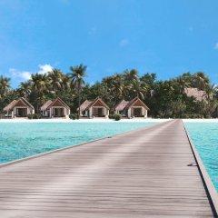 Отель Heritance Aarah (Premium All Inclusive) Мальдивы, Медупару - отзывы, цены и фото номеров - забронировать отель Heritance Aarah (Premium All Inclusive) онлайн фото 6