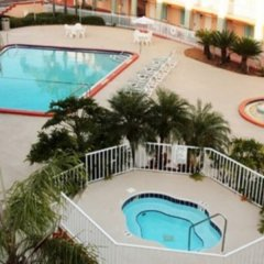 Отель Clarion Inn & Suites Clearwater с домашними животными