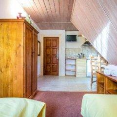 Отель Aparthotel Pod Nosalem Закопане удобства в номере