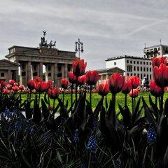 Отель BNB Brandenburg Gate Германия, Берлин - отзывы, цены и фото номеров - забронировать отель BNB Brandenburg Gate онлайн развлечения