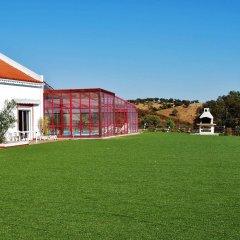 Отель Buddha Peaceful Oasis спортивное сооружение