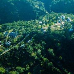 Отель The Kupid Hill Homestay Далат приотельная территория