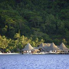 Отель Sofitel Bora Bora Marara Beach Hotel Французская Полинезия, Бора-Бора - отзывы, цены и фото номеров - забронировать отель Sofitel Bora Bora Marara Beach Hotel онлайн приотельная территория